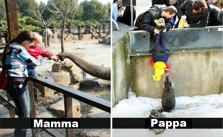 dyrepark-mamma-pappa-eavisa