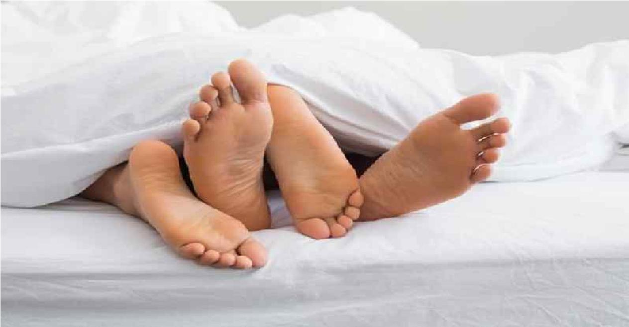 sexleketøy på nett kan gravide spise scampi