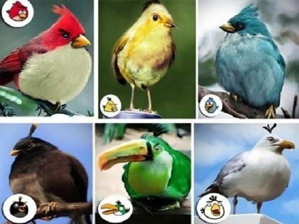 Angry Birds – Level: Virkeligheten Nivå 2