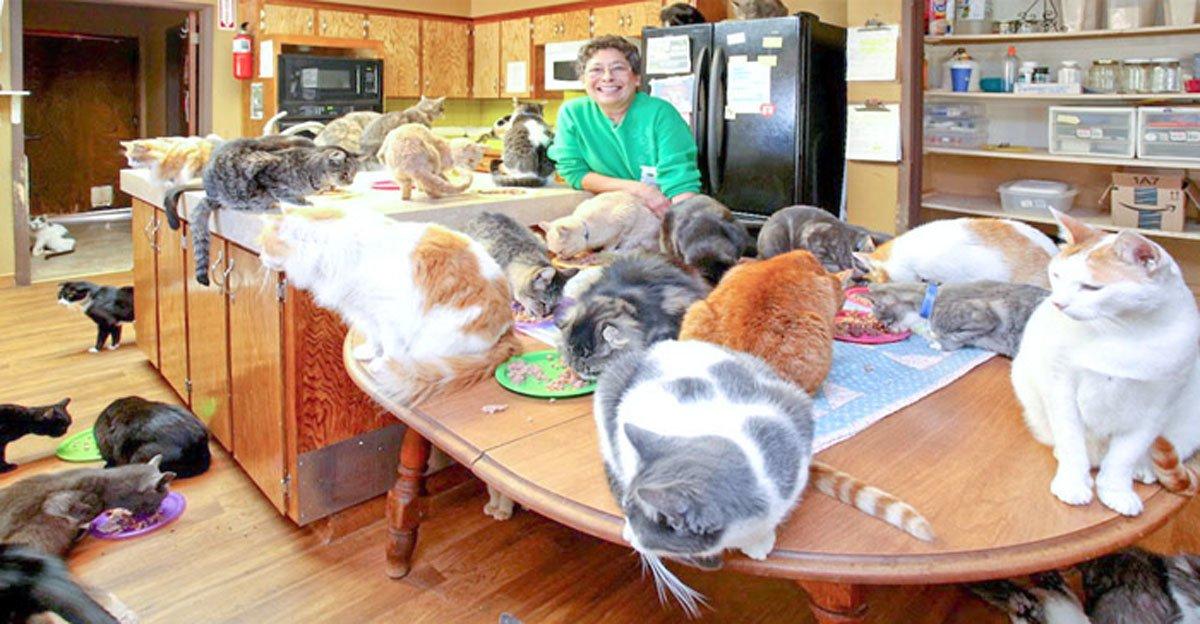 Ann-Helen fra Kristiansund er skilt 6 ganger. Nå bor hun med 43 katter