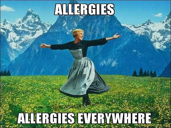 12 Ting alle med allergi kjenner igjen.