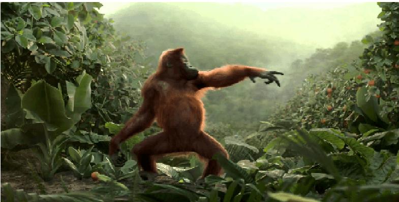 Dyr er de beste danserne. Her er bevisene!