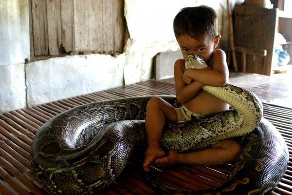 17 bilder der mennesker leker med dødelige rovdyr