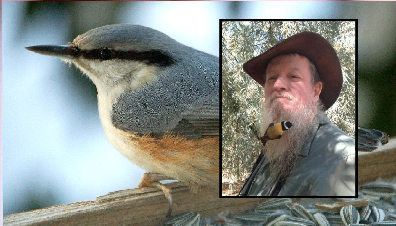 Nils Erik (38 år) fra Orkanger har fugl boende i skjegget!