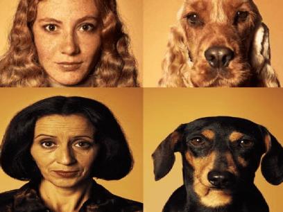 Hunder som ligner på eieren sin
