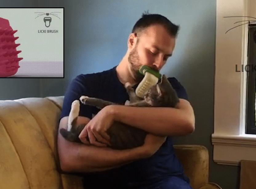Kattebørsten som viser at katte-eiere er SYKERE enn de fleste!