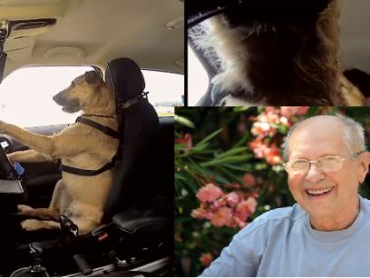 Morten har bygget en bil som hunder skal kjøre. Politiet sier nei!