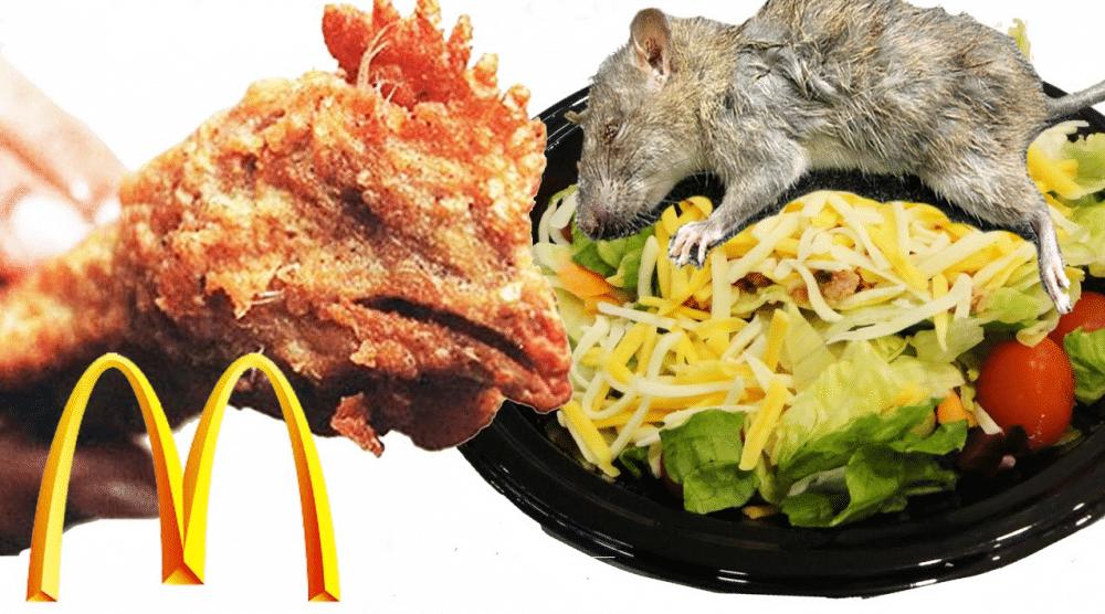 FILM: 10 MOTBYDELIGE grunner til at du ALDRI bør spise på Mcdonalds!
