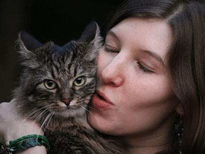 SISTE NYTT: Evig singel kvinne skaffer seg katt nr 3 og innser at løpet nå er kjørt