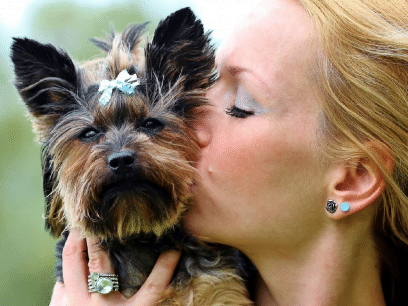 AKKURAT NÅ:  Syk syk kvinne har allerede kjøpt 14 gaver til hunden sin. Hunden kunne ikke brydd seg mindre