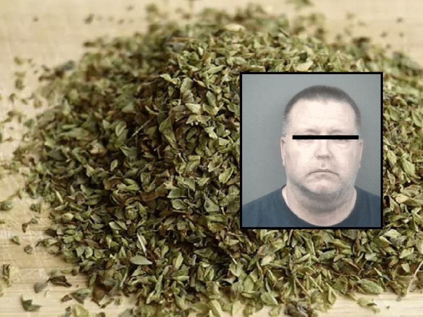 SISTE NYTT: Mann arrestert med 23 kilo oregano på Svinesund. Trodde han hadde kjøpt marihuana i Nederland